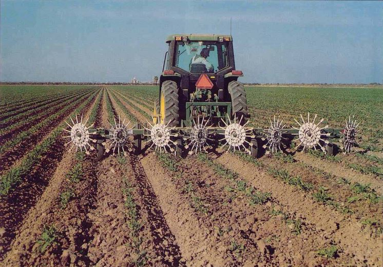 Picket Sugar Beet Manager